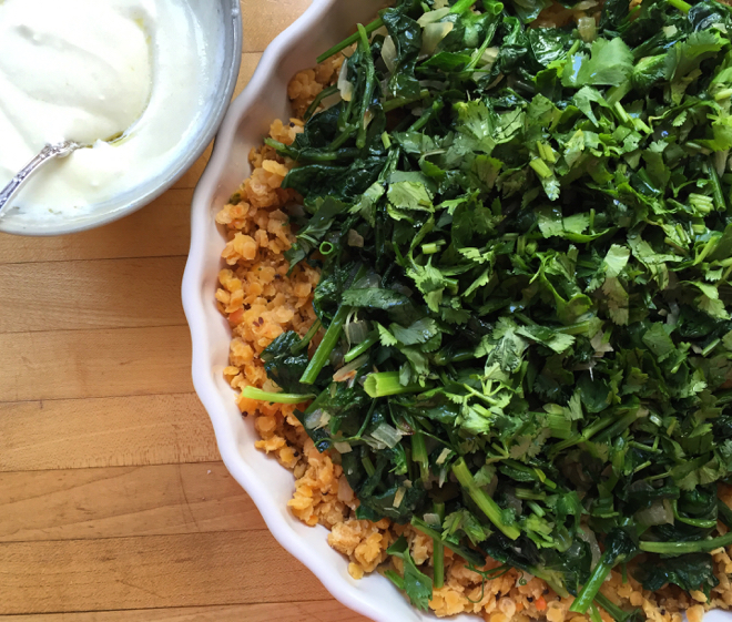 red lentils pea shoots yogurt