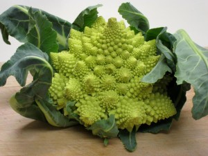 broccoli_romanesco1